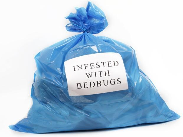 Signs You are Sleeping with Bed Bugs